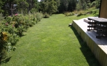 The lawn outside cabin 3b.